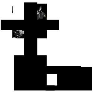 LFCC11